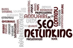 devis netlinking agence web française