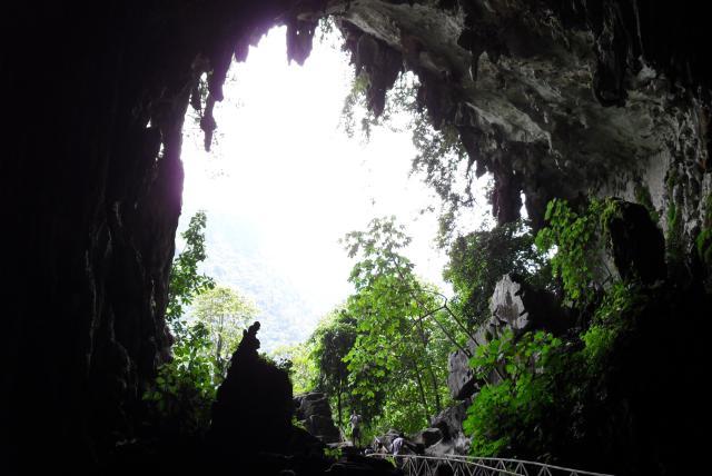 cueva-de-las-lechuzas-tingo-maria